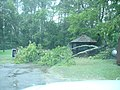 Trees down and debris at refuge housing. (6093604031).jpg