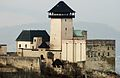 Trenčiansky hrad zo severu 18022011.jpg
