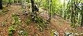 Triglav National Park - trail 5.jpg
