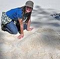 Trilobite in the sand 10 (46789952031).jpg