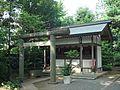 Tsushima Tenno-Inari-Mitsumine-Mitake-Tenjin-Itsukushima (津島天王・稲荷・三峰・御嶽・天神・厳島社) Shrines in Shimmei Shrine (神明神社) - panoramio.jpg