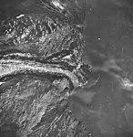 Tyeen Glacier, tidewater glacier terminus and striations in the rocks, September 17, 1966 (GLACIERS 5935).jpg