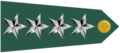 US Army O10 shoulderboard-horizontal.png