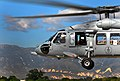 US Navy 100115-N-4774B-969 A SH-60F Sea Hawk helicopter assigned to the Red Lions of Helicopter Anti-Submarine Squadron (HS) 15, delivers water and supplies to Haiti as part of rescue and relief efforts.jpg