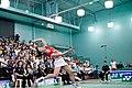 US Open Badminton 2011 2813 (1).jpg