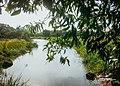 Uma das Lagoas APP da Lagoa Encantada que faz parte da região dos alagados do Vale Encantado.jpg