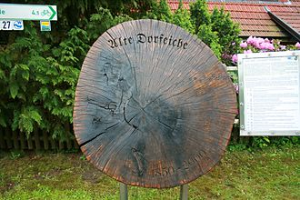 Undeloh - The old village oak in the heart of the village