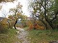 Vagando per il Carso.......e a S.Lorenzo - panoramio.jpg