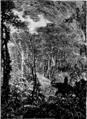 Verne - La Maison à vapeur, Hetzel, 1906, Ill. page 162.png