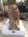 Vidisha District Museum Boar front.jpg