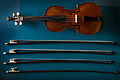 Vienna - Violin and bows - 9604.jpg