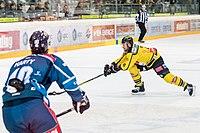 Vienna Capitals vs Fehervar AV19 -96.jpg