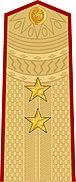 Vietnam People's Army Lieutenant General