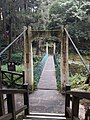 View from stairs down to Alishan Suspension Bridge.jpg