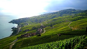 View from the Lavaux.jpg