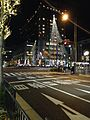 View of Kawaramachi-Oike Crossroads at night.jpg