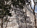 View through Trees to El Castillo (The Castle) - Chichen Itza Archaeological Site - Yucatan - Mexico.jpg