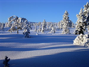 Sumarr and Vetr - Winter in Blefjell, Norway.