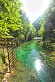 Vintgar Gorge (35642760802).jpg