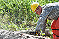 Virginia Guard soldiers clear fallen trees 110828-A--413.jpg