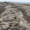 Visit Tel Arad 39.jpg