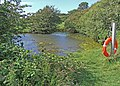 Visitor centre pond - geograph.org.uk - 870005.jpg