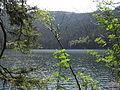 Vylet k Cernemu jezeru Sumava - 9.srpna 2010 148.JPG