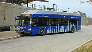 Metroway - A Metroway New Flyer XN40 bus at the Braddock Road station