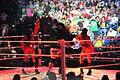 WWE Raw IMG 0889 (11704729816).jpg