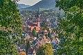 Waldkirch - Blick auf die Stadt.jpg