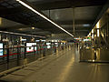 Wanyuanjie station platform.jpg