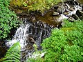 Waterfall in Strathyre Forest - geograph.org.uk - 869830.jpg
