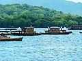 West Lake 西湖 - panoramio (2).jpg