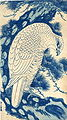 White Falcon in a pine tree, woodblock print by Sawa Sekkyô, 13.5 x 7.75 inches.jpg