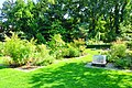 Wikipedia 13. Fotoworkshop Botanischer Garten Erlangen 2013 by-RaBoe 060.jpg