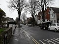Winter trees in Oxford Road - geograph.org.uk - 1779467.jpg