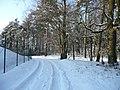 Winterliches Rosengarten - panoramio - osand (6).jpg