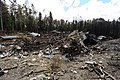 Wreckage of a 3rd Wing C-17 Globemaster III that crashed about 6-14 p.m. (Alaska time) July 28, 2010 (2).jpg
