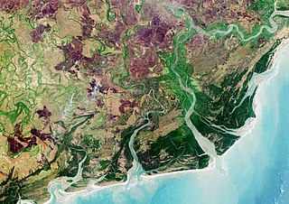Zambezian coastal flooded savanna
