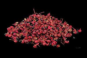 Zanthoxylum piperitum - Fruit and seeds