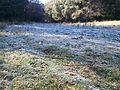 Παγωμένο χωράφι - panoramio (1).jpg
