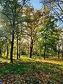 Ботанічний сад ДНУ теріторія саду.jpg