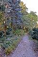 Ботанічний сад Національного аграрного університету Київ 01.jpg