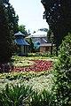 Ботанічний сад Чернівецького національного університету.jpg