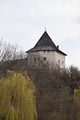 Галицький замок (руїни) 08.jpg