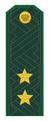 Генерал-лейтенант ФТС РФ.png