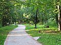 Детский парк в пос. Разлив. - panoramio.jpg