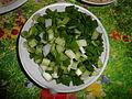 Зеленый лук.JPG