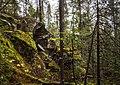 Карасьи горы - panoramio (30).jpg