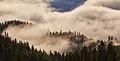 Карпатьскі тумани.jpg